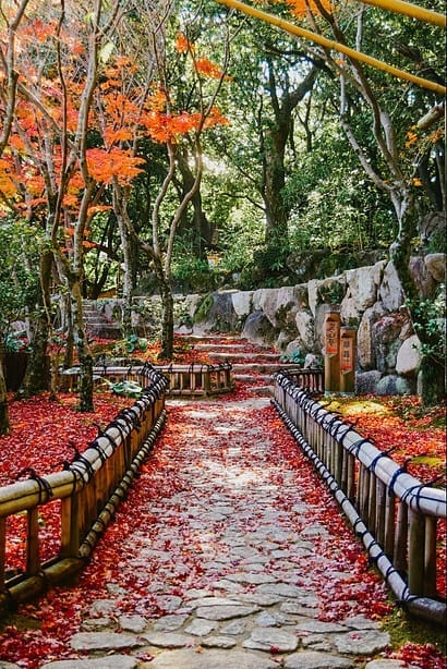 stone-pathway-covered-in-red-leaves-in-kobe-japan